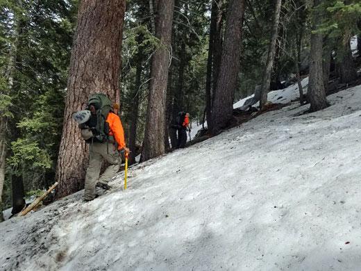 Hiking Fuller Ridge