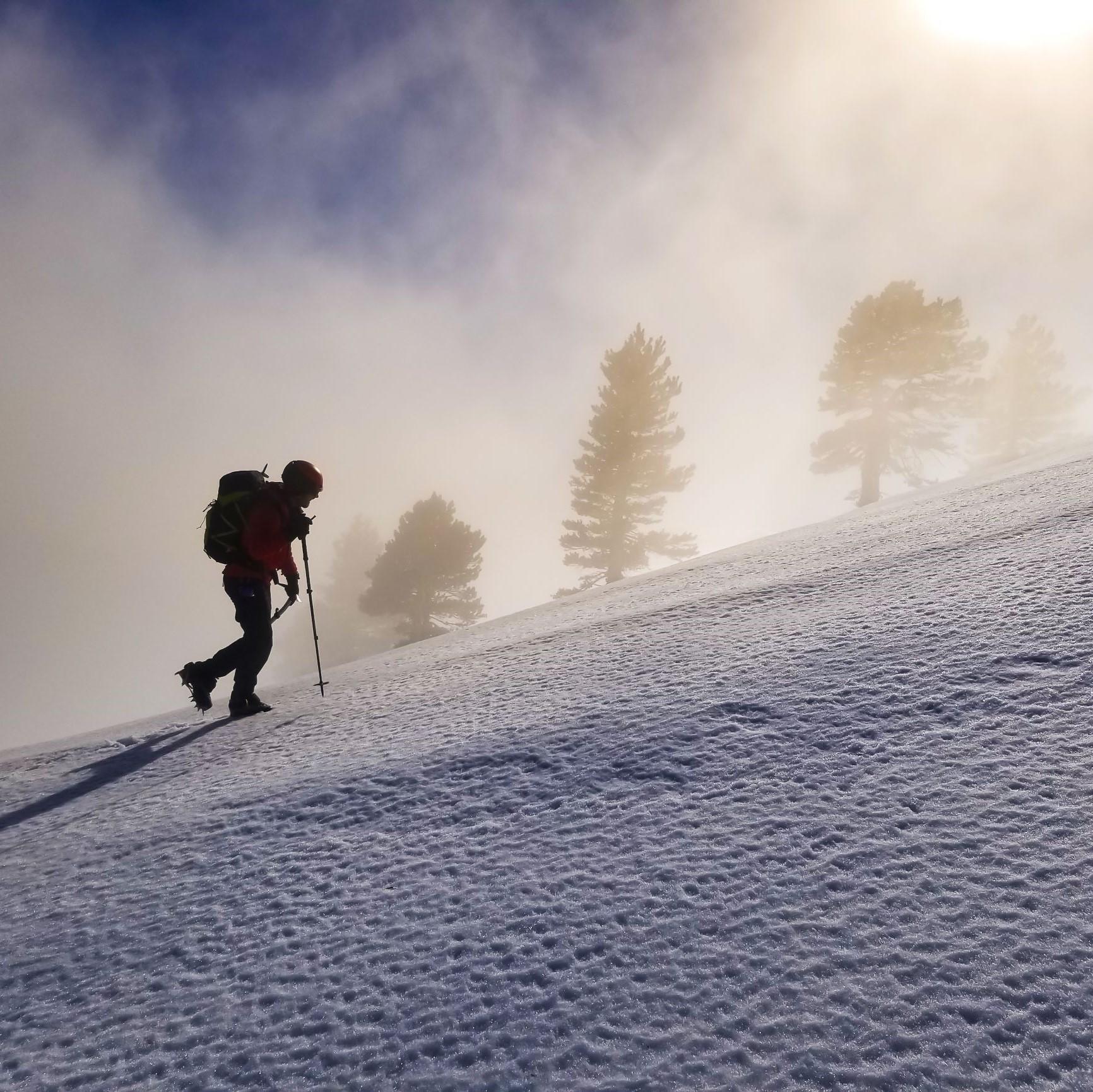 Snow Rescues